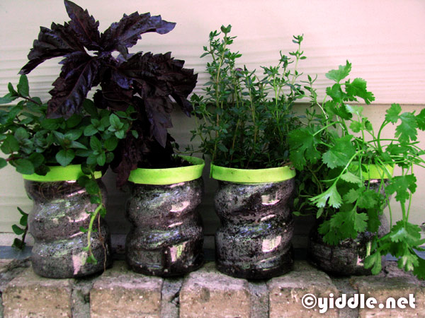How to Make an Herb Garden from Recycled Plastic Bottles yiddlenet